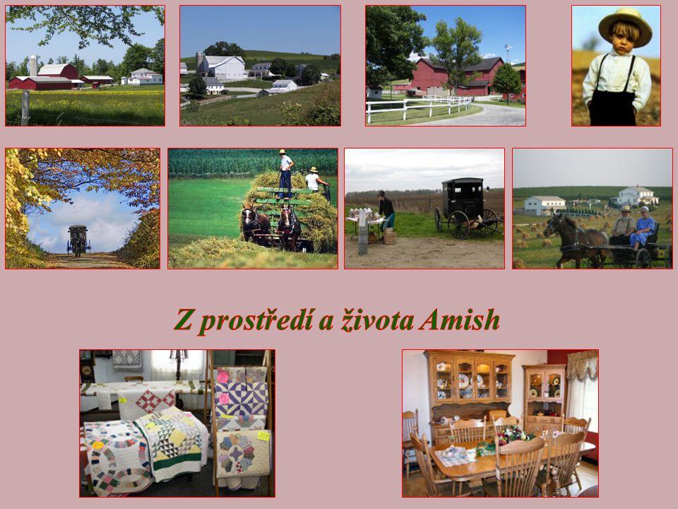 Amish jsou shromážděni v malých komunitách.