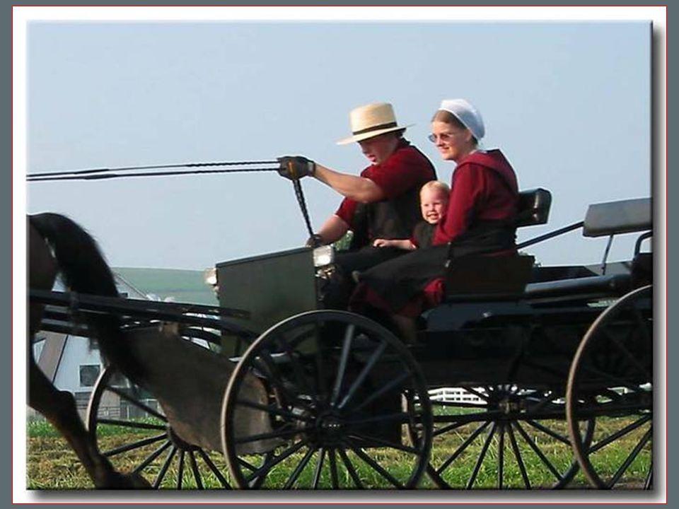 Amish bydlí ve strohých a útulných domech, bez moderního komfortu, kde není tekoucí voda, ani elektřina, protože jejich náboženství to zakazuje.Přesto jsou ale jejich obydlí velmi útulná.