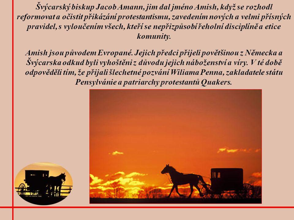 U Amish je kůň společníkem uctívaným a naprosto nepostradatelným.