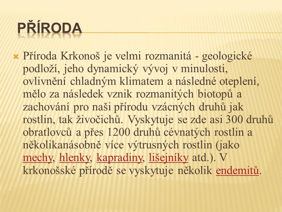  Příroda Krkonoš je velmi rozmanitá - geologické podloží, jeho dynamický vývoj v minulosti, ovlivnění chladným klimatem a následné oteplení, mělo za