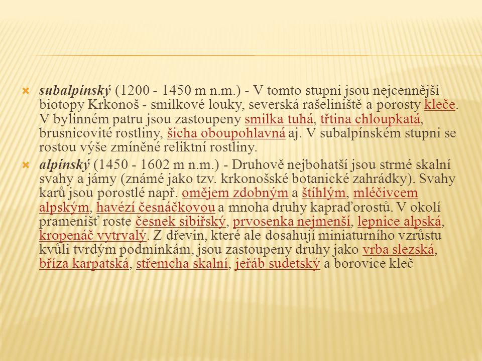  subalpínský (1200 - 1450 m n.m.) - V tomto stupni jsou nejcennější biotopy Krkonoš - smilkové louky, severská rašeliniště a porosty kleče. V bylinné