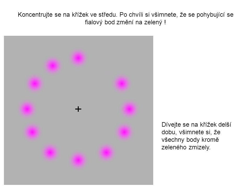 Koncentrujte se na křížek ve středu. Po chvíli si všimnete, že se pohybující se fialový bod změní na zelený ! Dívejte se na křížek delší dobu, všimnet