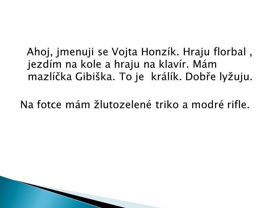 Ahoj, jmenuji se Vojta Honzík.Hraju florbal, jezdím na kole a hraju na klavír.
