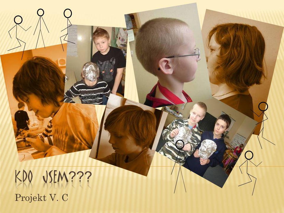 Projekt V. C