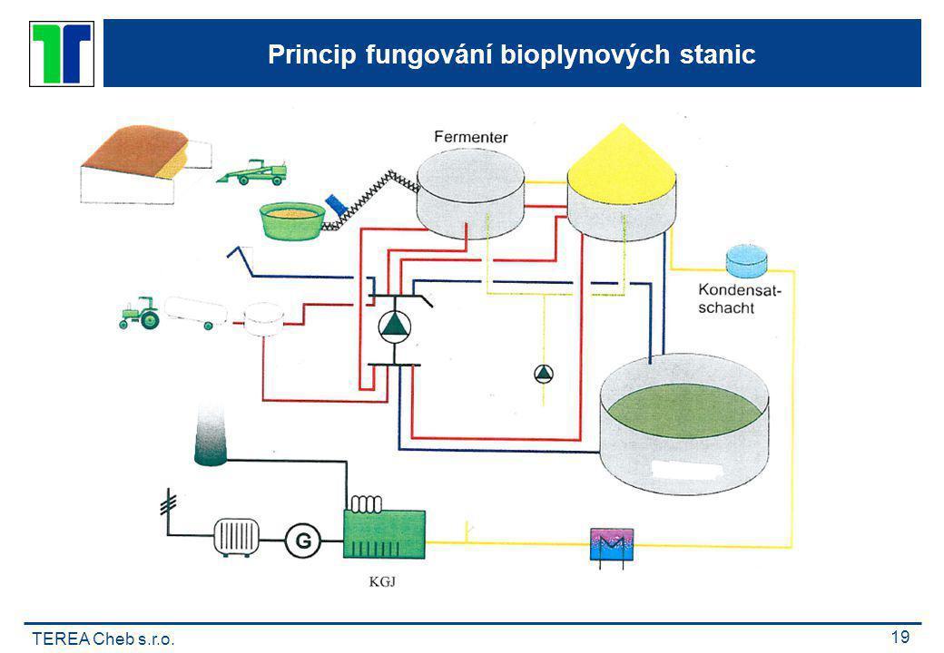 TEREA Cheb s.r.o. 19 Princip fungování bioplynových stanic