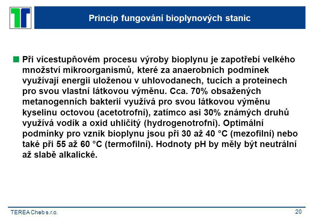 TEREA Cheb s.r.o. 20 Princip fungování bioplynových stanic  Při vícestupňovém procesu výroby bioplynu je zapotřebí velkého množství mikroorganismů, k
