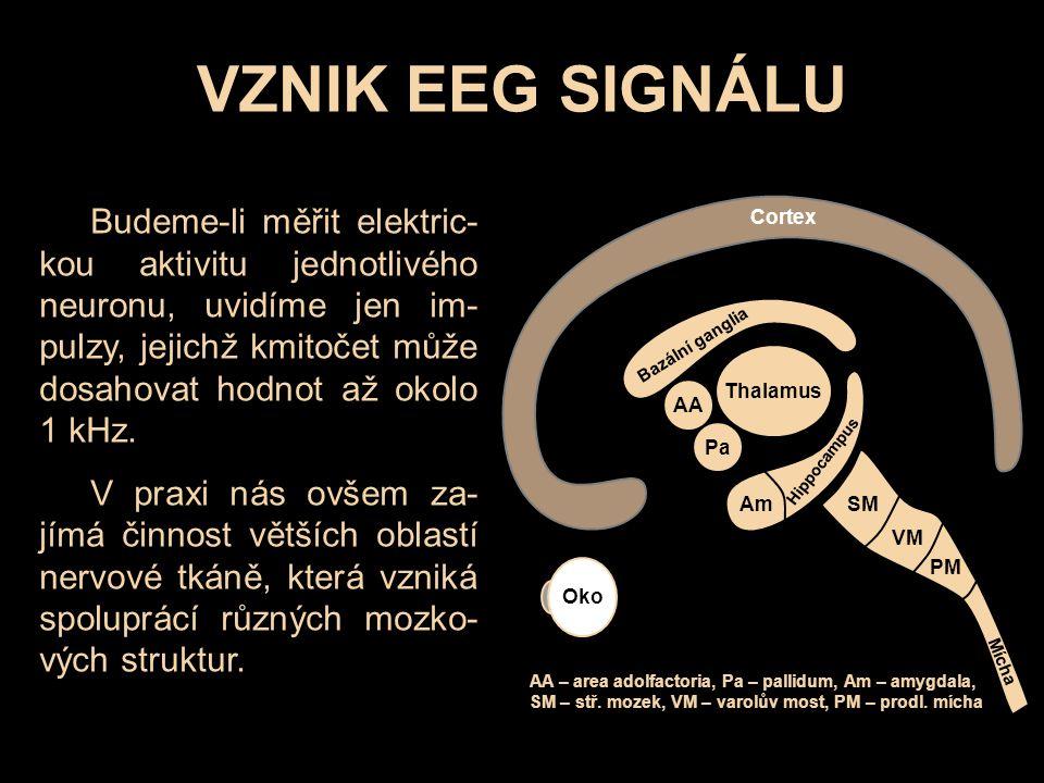VZNIK EEG SIGNÁLU Oko Thalamus AA Pa Cortex Bazální ganglia Am Hippocampus SM VM PM Mícha AA – area adolfactoria, Pa – pallidum, Am – amygdala, SM – stř.