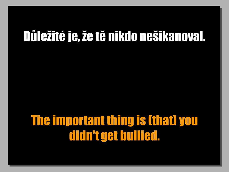 Důležité je, že tě nikdo nešikanoval. The important thing is (that) you didn t get bullied.