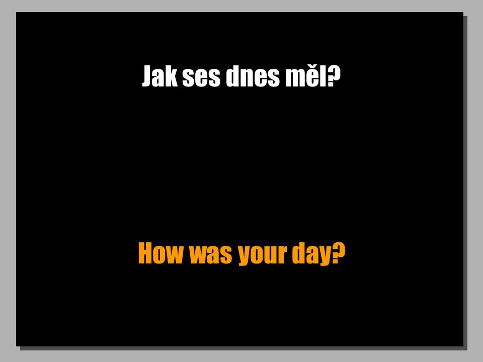 Jak ses dnes měl? How was your day?