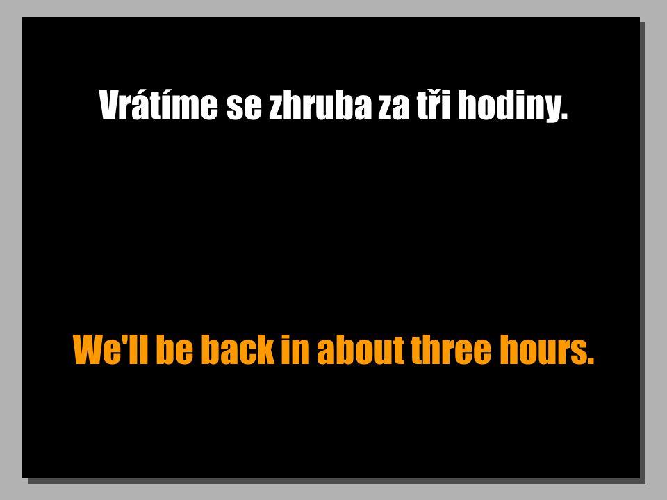 Vrátíme se zhruba za tři hodiny. We'll be back in about three hours.