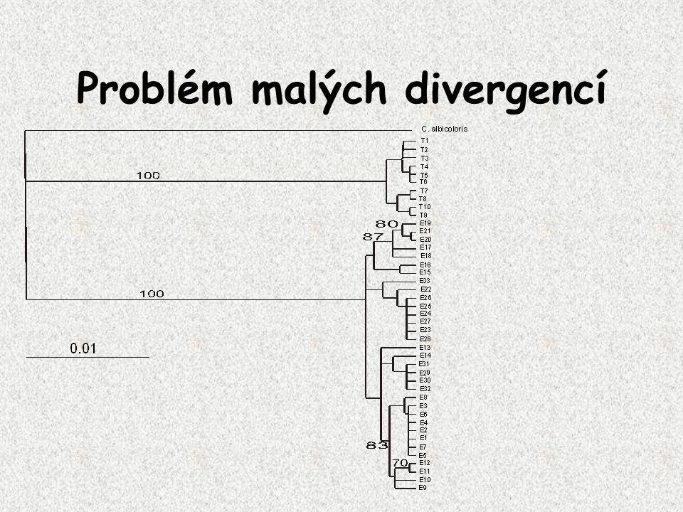 Problém malých divergencí