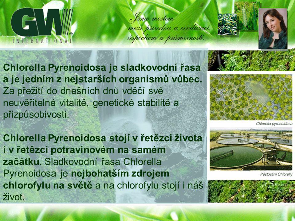 Chlorella Pyrenoidosa je sladkovodní řasa a je jedním z nejstarších organismů vůbec. Za přežití do dnešních dnů vděčí své neuvěřitelné vitalitě, genet