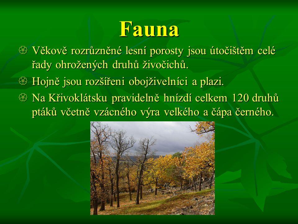 Lesy  Více než 63% území pokrývají převážně listnaté a smíšené lesy.  Na skalnatých vrcholech se vyskytují skalní stepi.  Pro nejnižší polohy jsou