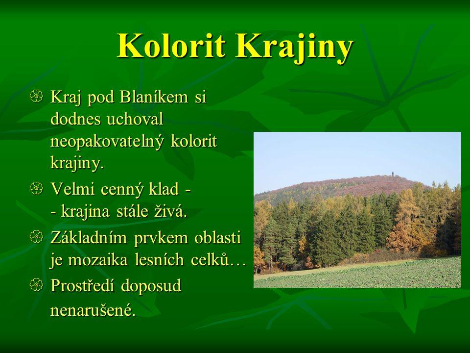 Blaník  Chráněná krajinná oblast Blaník leží ve středočeském kraji na jih od Vlašimi.  S rozlohou necelých 41 km² je Blaník nejmenší CHKO v naší rep