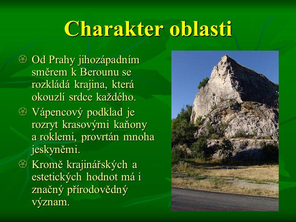 Charakter oblasti  Od Prahy jihozápadním směrem k Berounu se rozkládá krajina, která okouzlí srdce každého.