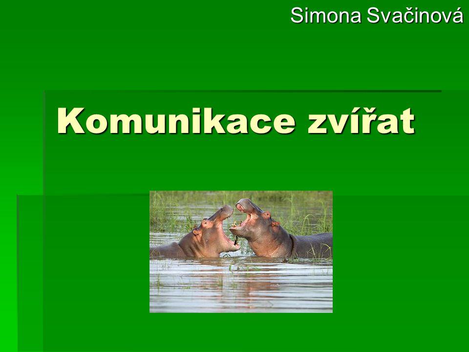 Komunikace zvířat Simona Svačinová Simona Svačinová