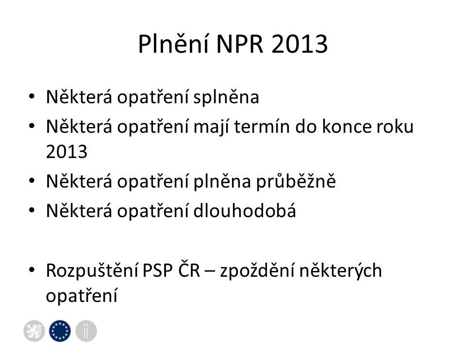 Plnění NPR 2013 Některá opatření splněna Některá opatření mají termín do konce roku 2013 Některá opatření plněna průběžně Některá opatření dlouhodobá Rozpuštění PSP ČR – zpoždění některých opatření