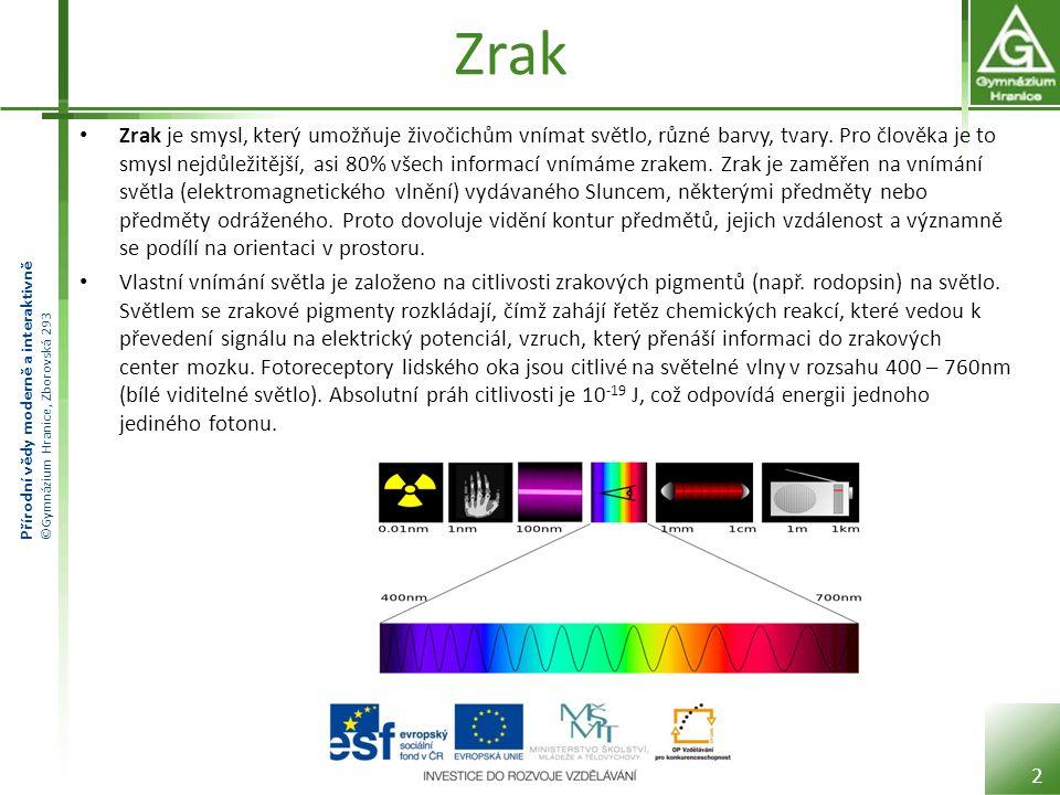 Přírodní vědy moderně a interaktivně ©Gymnázium Hranice, Zborovská 293 Zrak Zrak je smysl, který umožňuje živočichům vnímat světlo, různé barvy, tvary.
