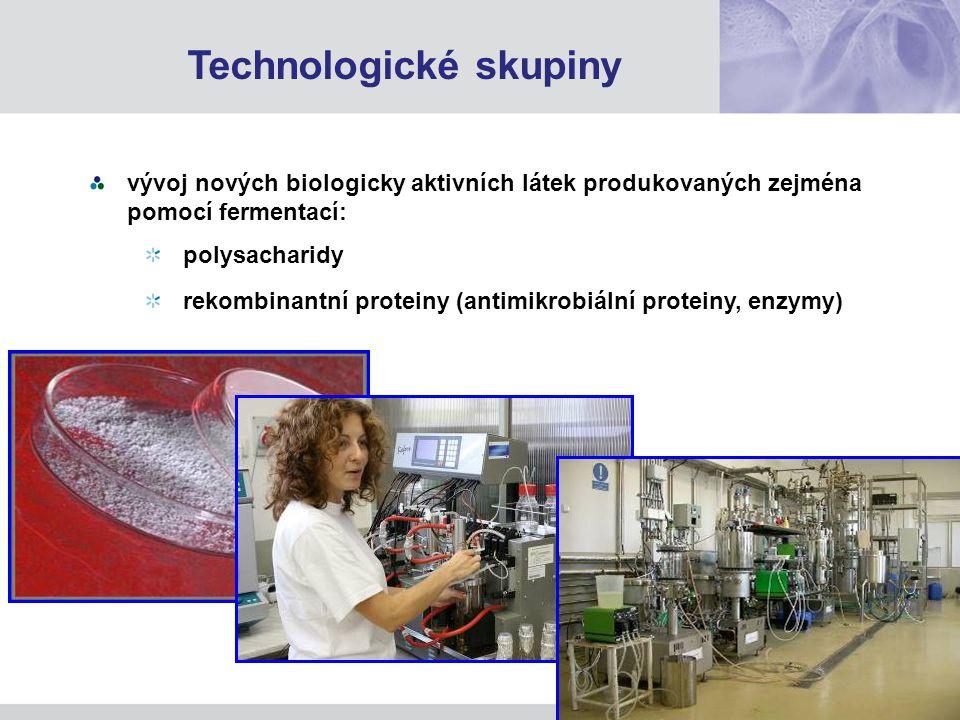 vývoj nových biologicky aktivních látek produkovaných zejména pomocí fermentací: polysacharidy rekombinantní proteiny (antimikrobiální proteiny, enzymy) Technologické skupiny