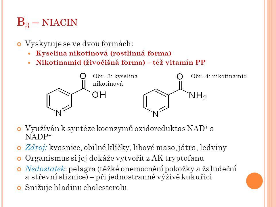 B 3 – NIACIN Vyskytuje se ve dvou formách: Kyselina nikotinová (rostlinná forma) Nikotinamid (živočišná forma) – též vitamín PP Využíván k syntéze koe