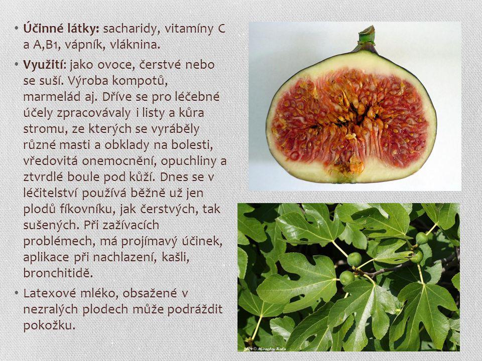Účinné látky: sacharidy, vitamíny C a A,B1, vápník, vláknina. Využití: jako ovoce, čerstvé nebo se suší. Výroba kompotů, marmelád aj. Dříve se pro léč