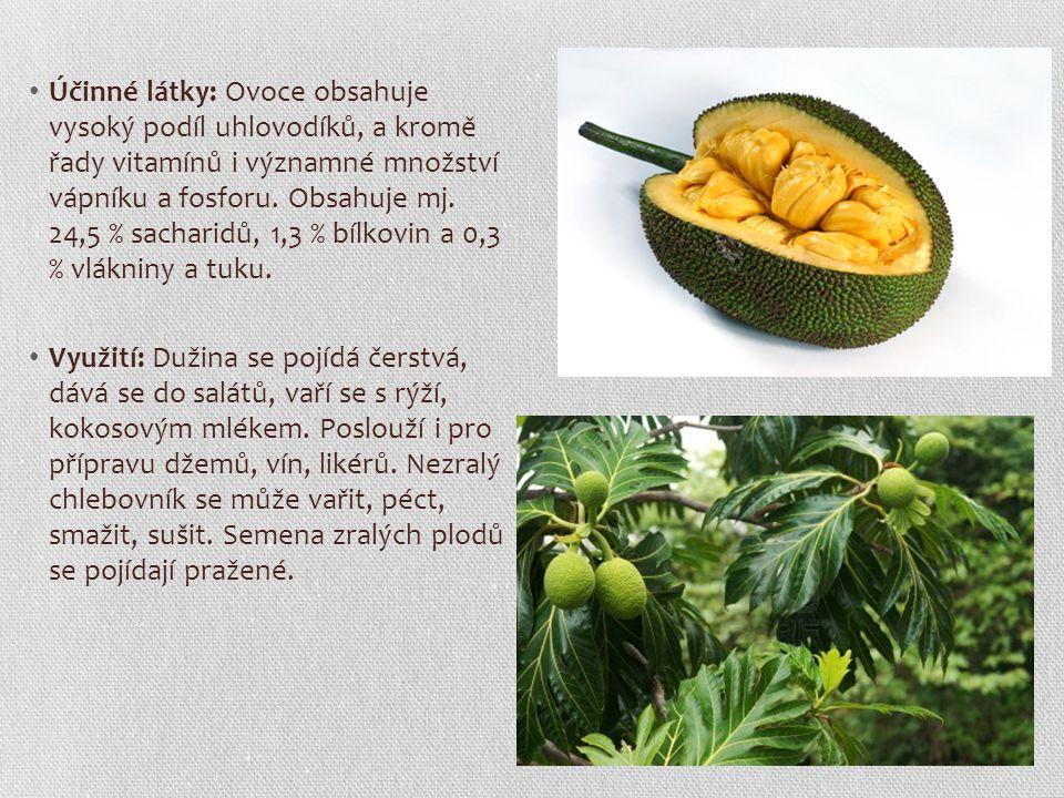 Účinné látky: Ovoce obsahuje vysoký podíl uhlovodíků, a kromě řady vitamínů i významné množství vápníku a fosforu. Obsahuje mj. 24,5 % sacharidů, 1,3