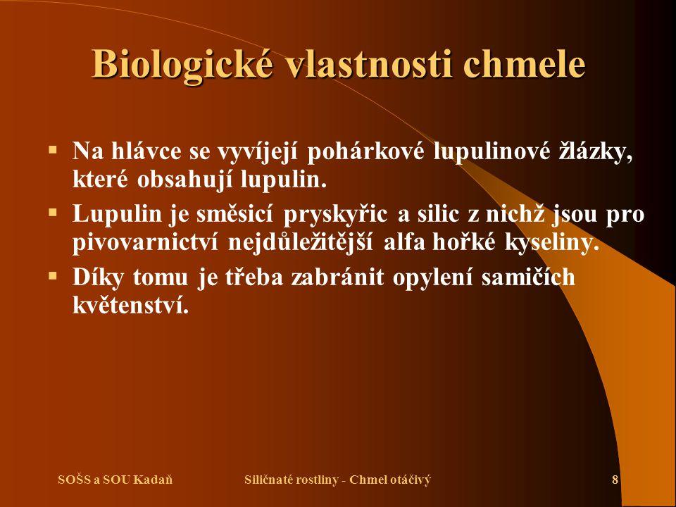 SOŠS a SOU KadaňSiličnaté rostliny - Chmel otáčivý29 Použité zdroje  Kuchtík, F., Procházka, I., Teksl, M., Valeš, J.: Pěstování rostlin II.