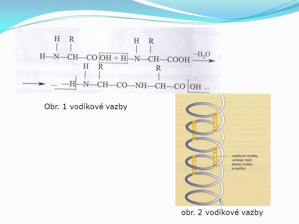 Iontové můstky  Zpevňují navzájem molekulární řetězce  vznikají mezi skupinami –COOH - a + NH 3 -  Působením alkálií (amoniak) se můstky rozpojí – molekuly vody mohou pronikat mezi jednotlivé řetězce a způsobí tak rozrušení keratinové stavby – keratin se stává měkký, málo odolný, citlivý vůči mechanickému poškození