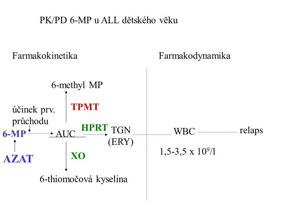 PK/PD 6-MP u ALL dětského věku FarmakokinetikaFarmakodynamika 6-methyl MP 6-MP AUC TGN (ERY) WBC relaps TPMT XO HPRT 6-thiomočová kyselina účinek prv.