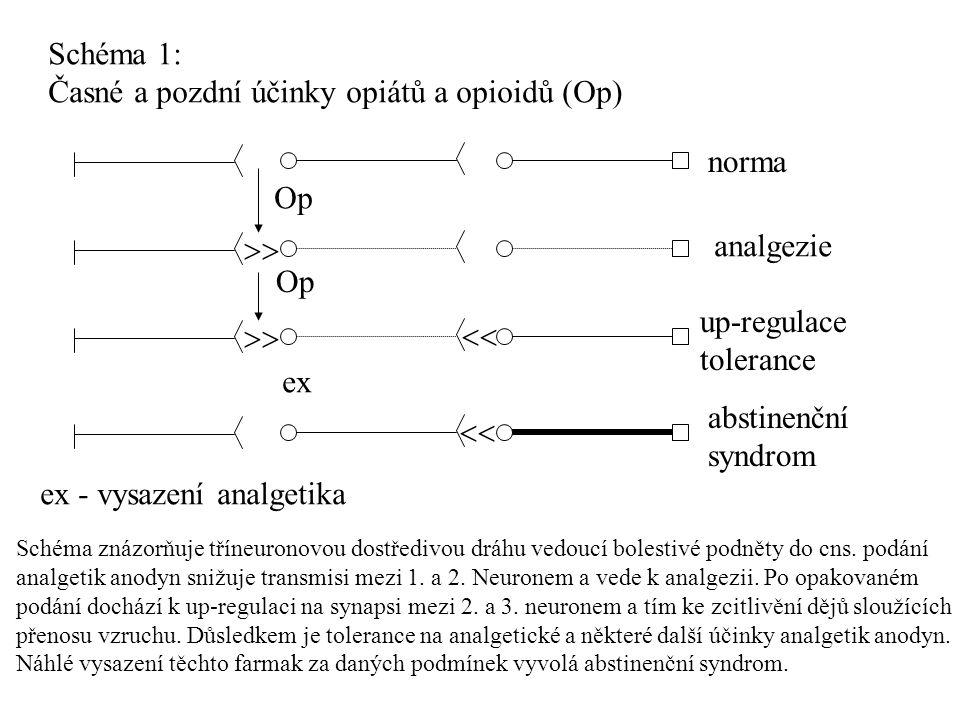 Schéma 1: Časné a pozdní účinky opiátů a opioidů (Op)   Op ex norma analgezie up-regulace tolerance abstinenční syndrom ex - vysazení analgetika S