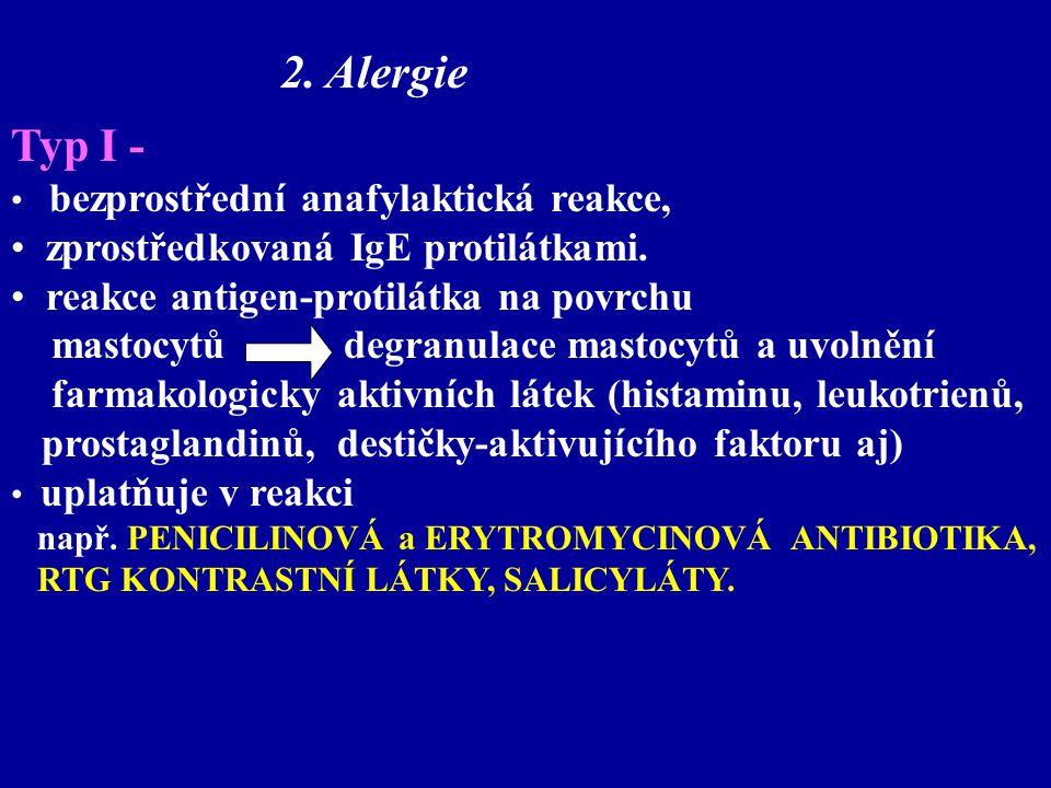 Typ I - bezprostřední anafylaktická reakce, zprostředkovaná IgE protilátkami. reakce antigen-protilátka na povrchu mastocytů degranulace mastocytů a u