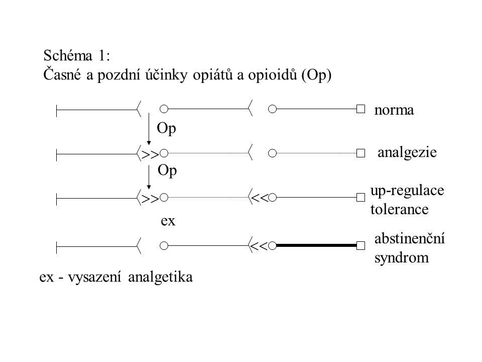 Schéma 1: Časné a pozdní účinky opiátů a opioidů (Op)   Op ex norma analgezie up-regulace tolerance abstinenční syndrom ex - vysazení analgetika