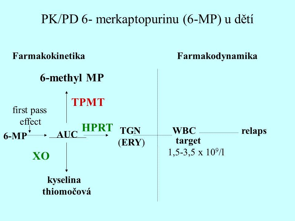 PK/PD 6- merkaptopurinu (6-MP) u dětí Farmakokinetika Farmakodynamika 6-methyl MP 6-MP AUC TGN (ERY) WBCrelaps TPMT XO HPRT kyselina thiomočová first