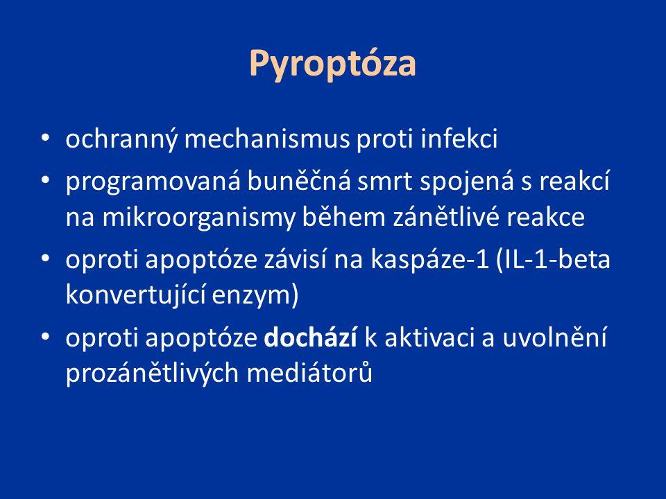 Pyroptóza ochranný mechanismus proti infekci programovaná buněčná smrt spojená s reakcí na mikroorganismy během zánětlivé reakce oproti apoptóze závis