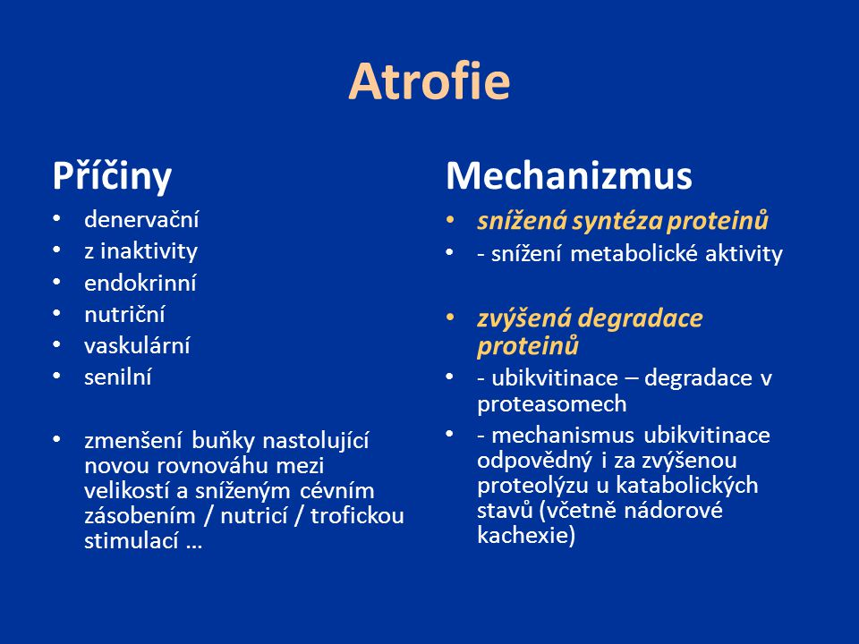 Hyperplazie výskyt u buněk schopných dělení fyziologická - hormonální (proliferace žlazového epitelu mléčné žlázy – gravidita, puberta) - kompenzatorní (játra – stimulace růstovými faktory) patologická - nadměrná stimulace hormony či růstovými faktory (hyperplazie endometria) Hypertrofie zvětšení buňky (orgánu) – nárůst objemu buňky – zvýšené množství strukturálních proteinů a organel fyziologická či patologická zvýšené funkční nároky či na podkladě specifické hormonální stimulace