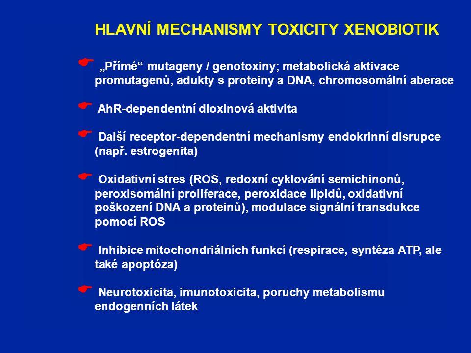 HLAVNÍ MECHANISMY TOXICITY XENOBIOTIK NA BUNĚČNÉ ÚROVNI (jsou výsledkem molekulárních procesů v buňce a na povrchu buňky)  Modulace buněčného cyklu, zvýšená proliferace buněk, modulace diferenciace, inhibice apoptózy  Disrupce mezibuněčných spojení (gap junctions, adherens junctions,...)  Cytotoxicita, indukce apoptózy  Přežívání, transformace buněk (komplexní mnohastupňový proces iniciace, promoční mechanismy – de/diferenciace, angiogeneze,...)