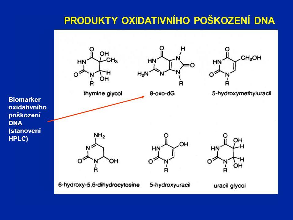 PRODUKTY OXIDATIVNÍHO POŠKOZENÍ DNA Biomarker oxidativního poškození DNA (stanovení HPLC)