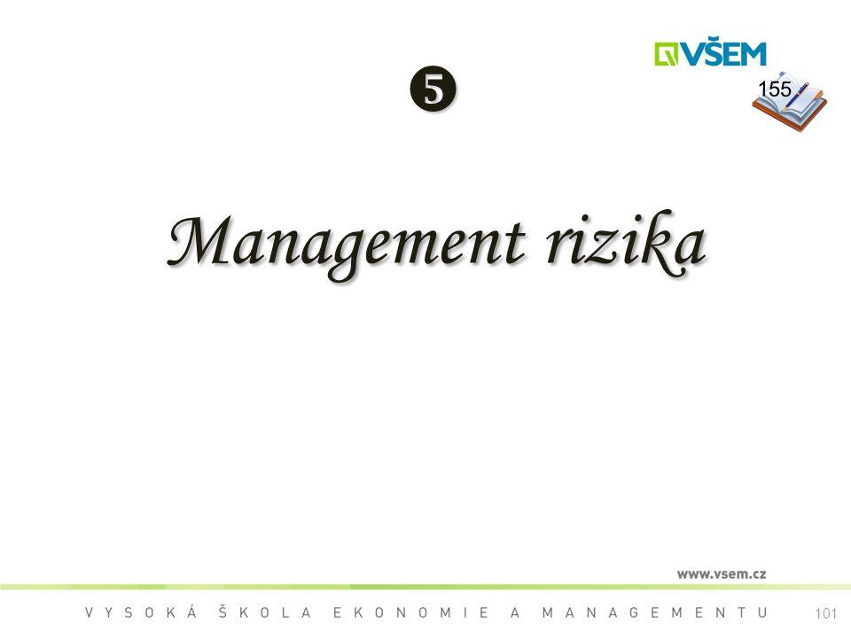  Management rizika 155 101