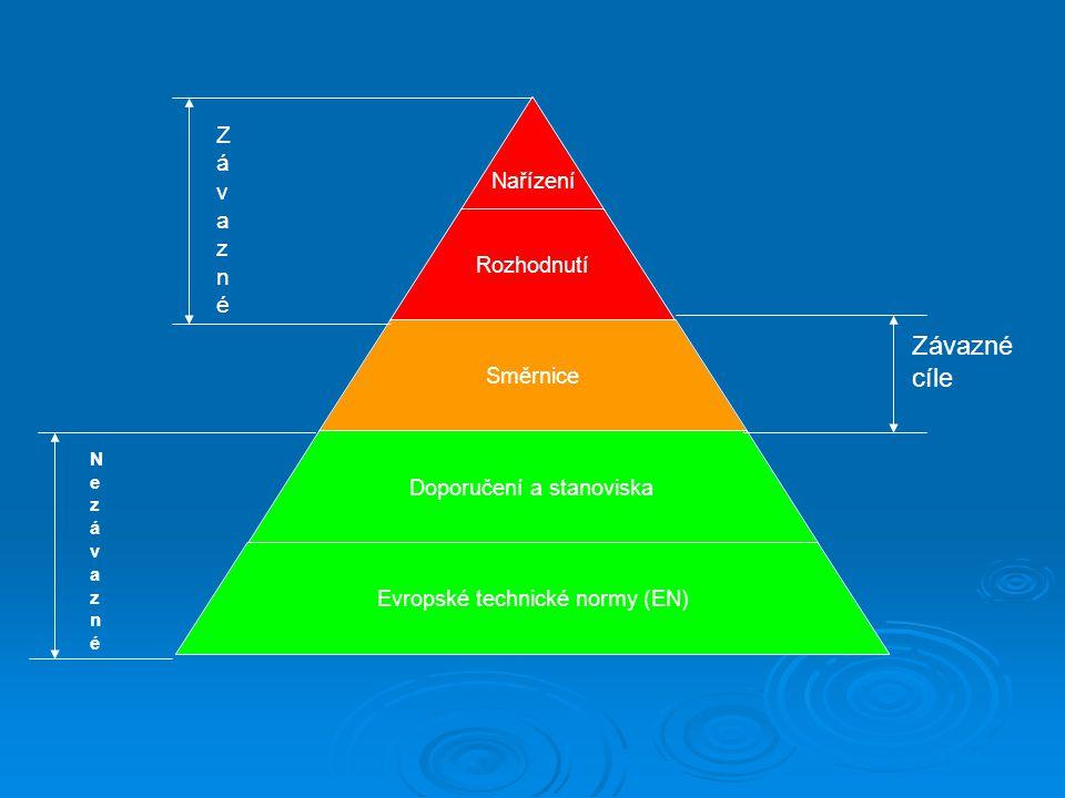Základní požadavky norem  Prvky systému řízení jakosti  Požadavky na prostředí provozu  Požadavky na kontrolu výrobku  Požadavky na kontrolu výrobního procesu  Požadavky na personál  Požadavky na systém kritických bodů (HACCP)