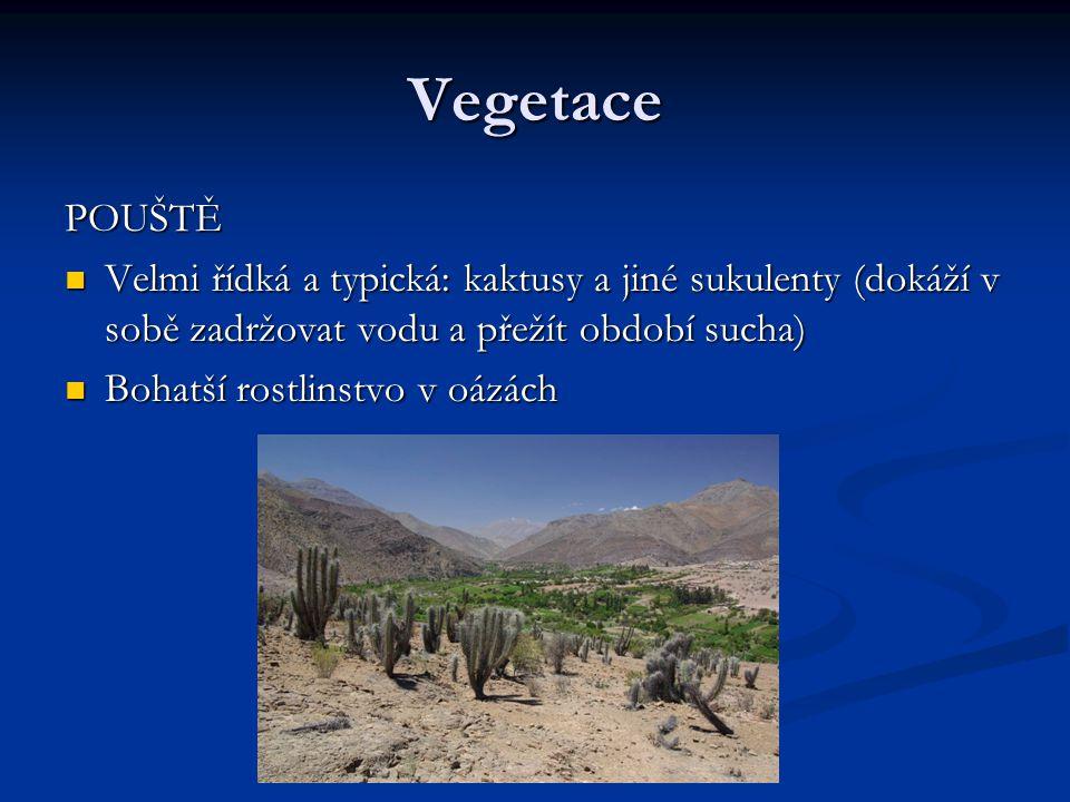 Vegetace POUŠTĚ Velmi řídká a typická: kaktusy a jiné sukulenty (dokáží v sobě zadržovat vodu a přežít období sucha) Velmi řídká a typická: kaktusy a jiné sukulenty (dokáží v sobě zadržovat vodu a přežít období sucha) Bohatší rostlinstvo v oázách Bohatší rostlinstvo v oázách