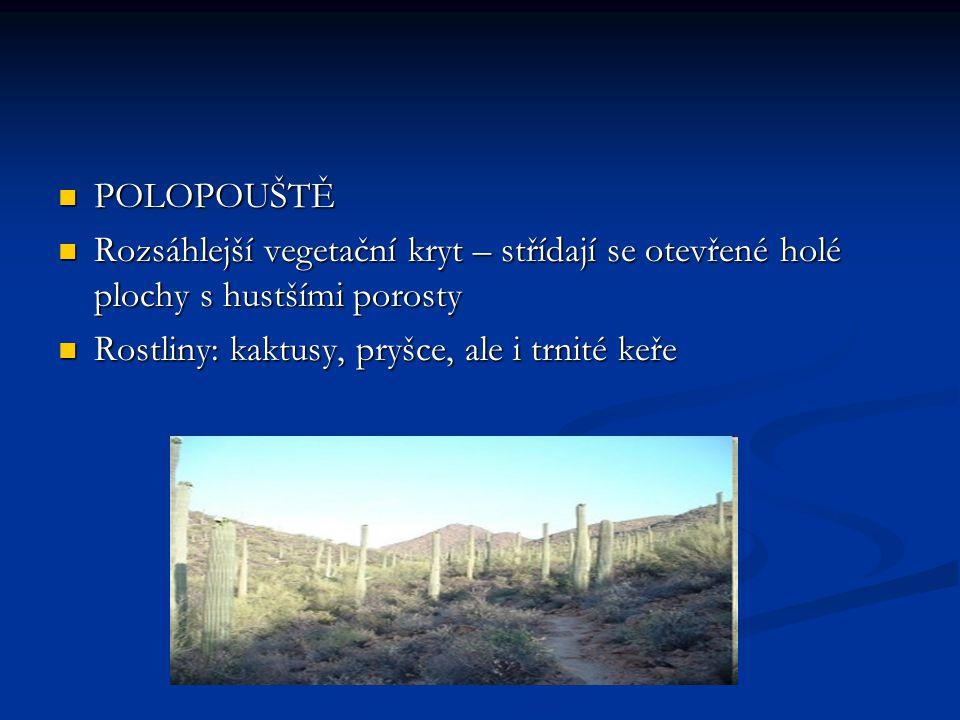 Zdroje obrázků www.wikipedia.cz www.wikipedia.cz www.wikipedia.cz www.obrazky.cz www.obrazky.cz www.obrazky.cz http://zviratkamodreplanety.blog.cz/0903/pous te-a-polopouste http://zviratkamodreplanety.blog.cz/0903/pous te-a-polopouste http://zviratkamodreplanety.blog.cz/0903/pous te-a-polopouste http://zviratkamodreplanety.blog.cz/0903/pous te-a-polopouste http://bio-zeme.wz.cz/1.html http://bio-zeme.wz.cz/1.html http://bio-zeme.wz.cz/1.html