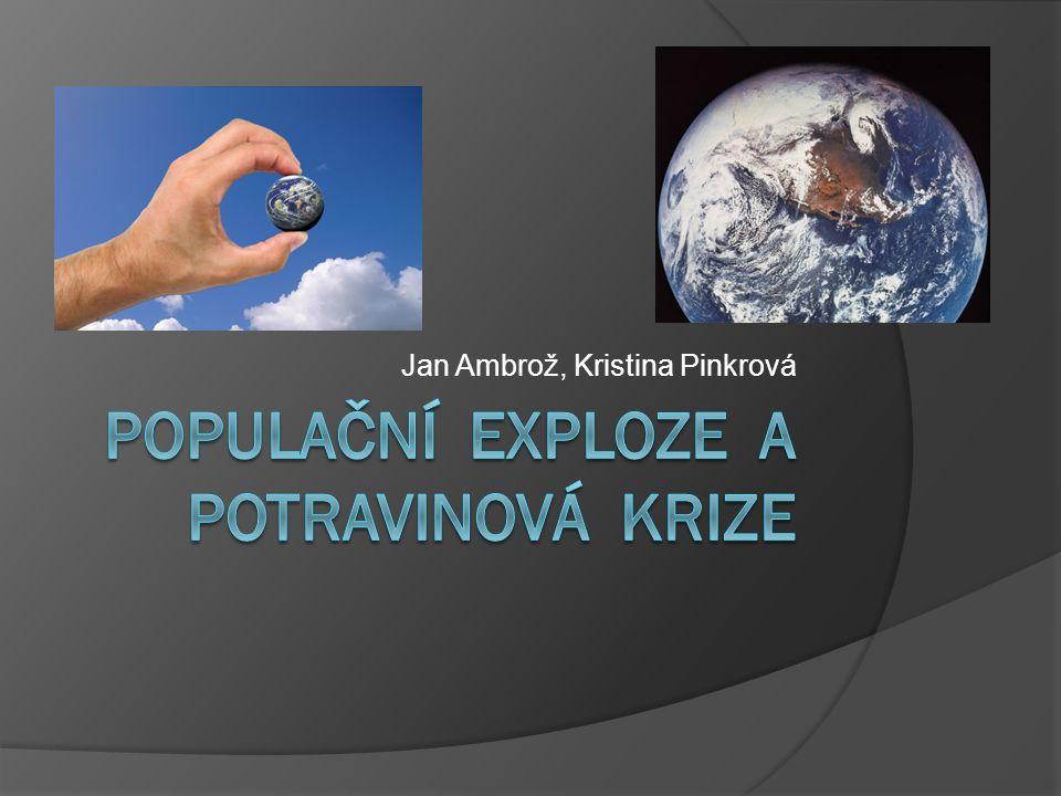 INFO  Oba dva problémy spolu úzce souvisí a jsou především záležitostí zemí třetího světa.