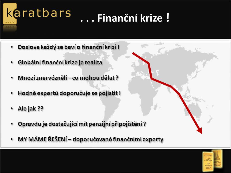 ... Finanční krize . Doslova každý se baví o finanční krizi .
