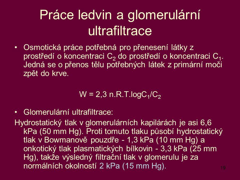 19 Práce ledvin a glomerulární ultrafiltrace Osmotická práce potřebná pro přenesení látky z prostředí o koncentraci C 2 do prostředí o koncentraci C 1