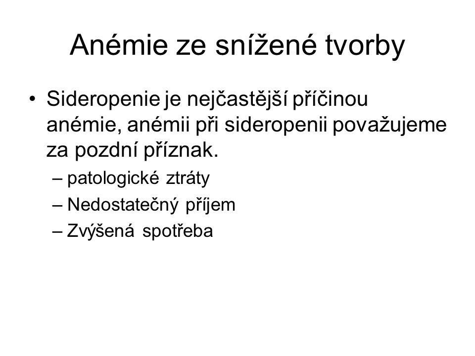 Anémie ze snížené tvorby Sideropenie je nejčastější příčinou anémie, anémii při sideropenii považujeme za pozdní příznak. –patologické ztráty –Nedosta