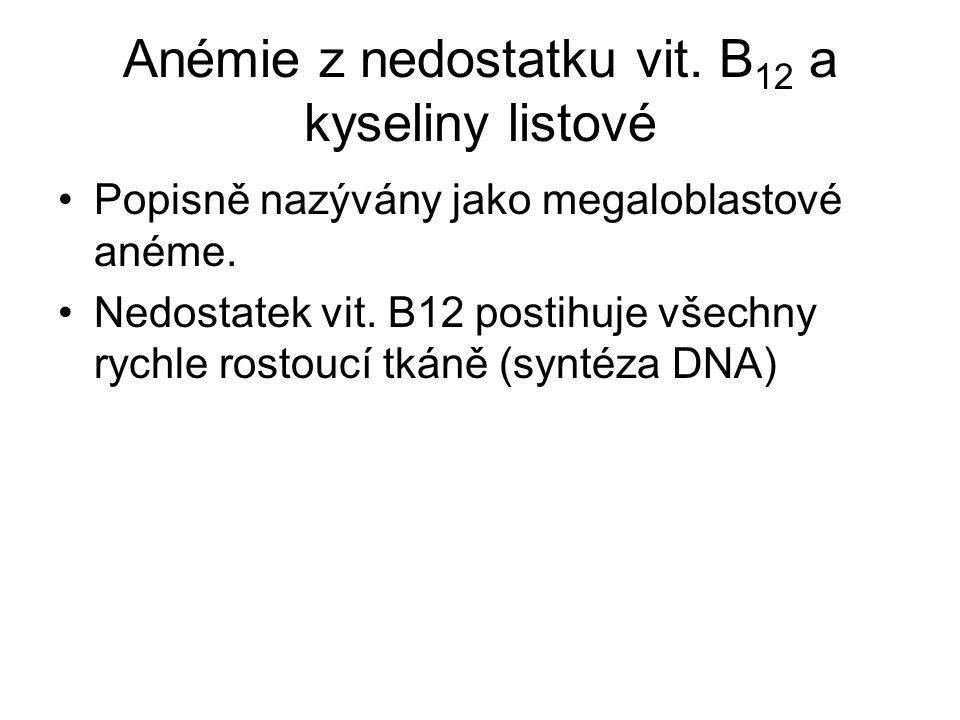 Anémie z nedostatku vit. B 12 a kyseliny listové Popisně nazývány jako megaloblastové anéme. Nedostatek vit. B12 postihuje všechny rychle rostoucí tká