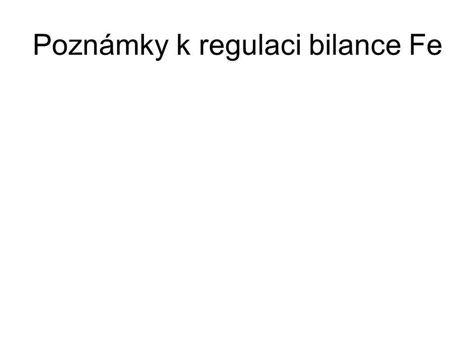 Poznámky k regulaci bilance Fe