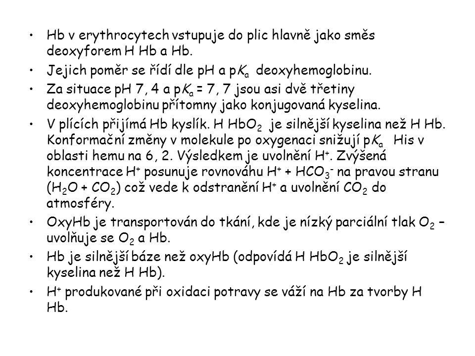Hb v erythrocytech vstupuje do plic hlavně jako směs deoxyforem H Hb a Hb. Jejich poměr se řídí dle pH a pK a deoxyhemoglobinu. Za situace pH 7, 4 a p