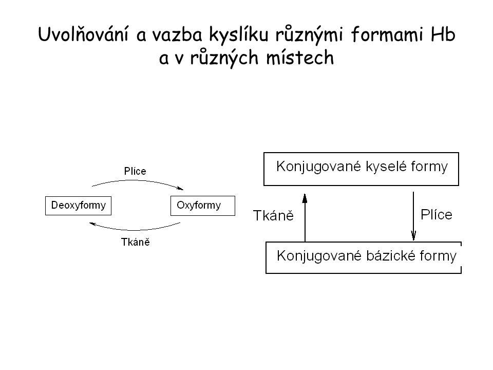 Uvolňování a vazba kyslíku různými formami Hb a v různých místech