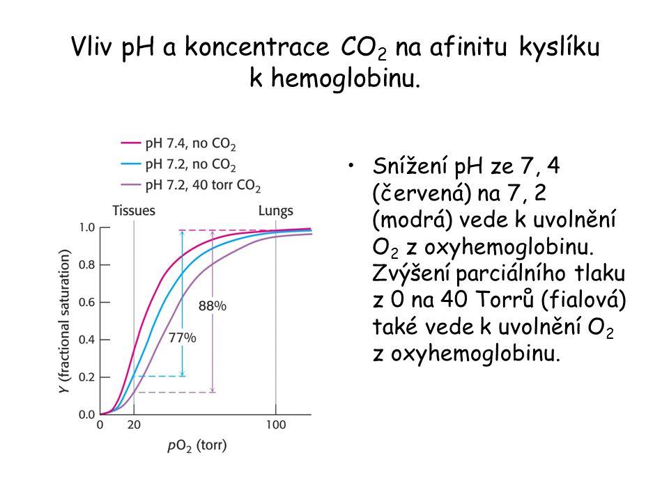 Vliv pH a koncentrace CO 2 na afinitu kyslíku k hemoglobinu. Snížení pH ze 7, 4 (červená) na 7, 2 (modrá) vede k uvolnění O 2 z oxyhemoglobinu. Zvýšen